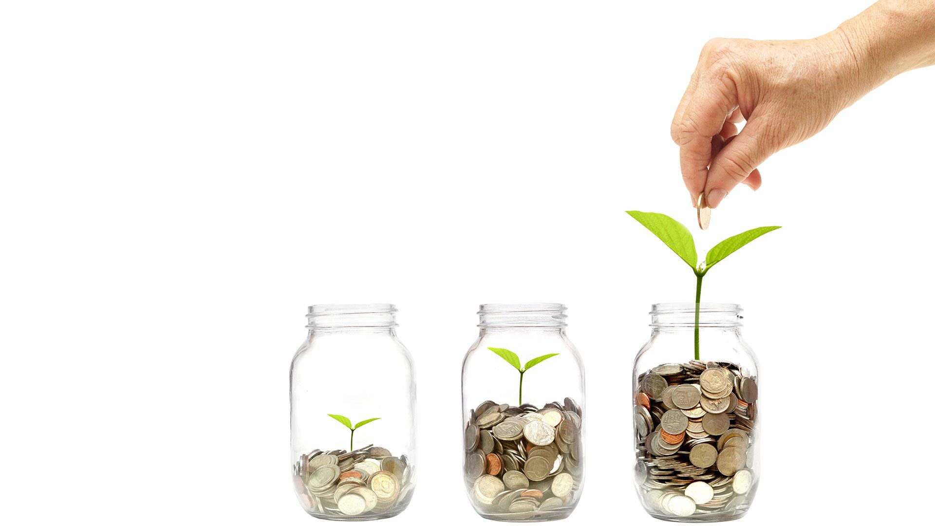 Sparen leben - Vermögensaufbau mit Whitebox